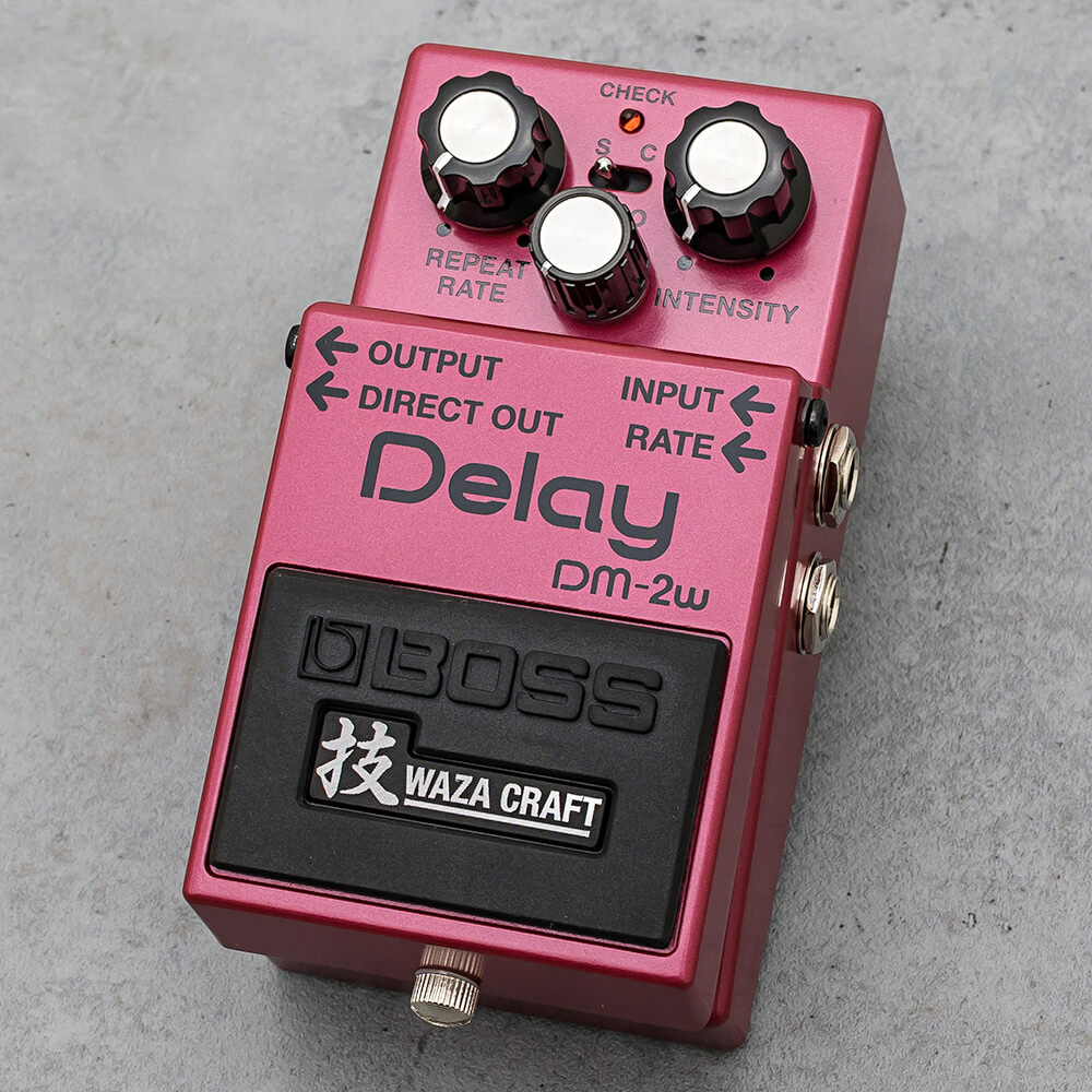 BOSS <br>DM-2W Delay