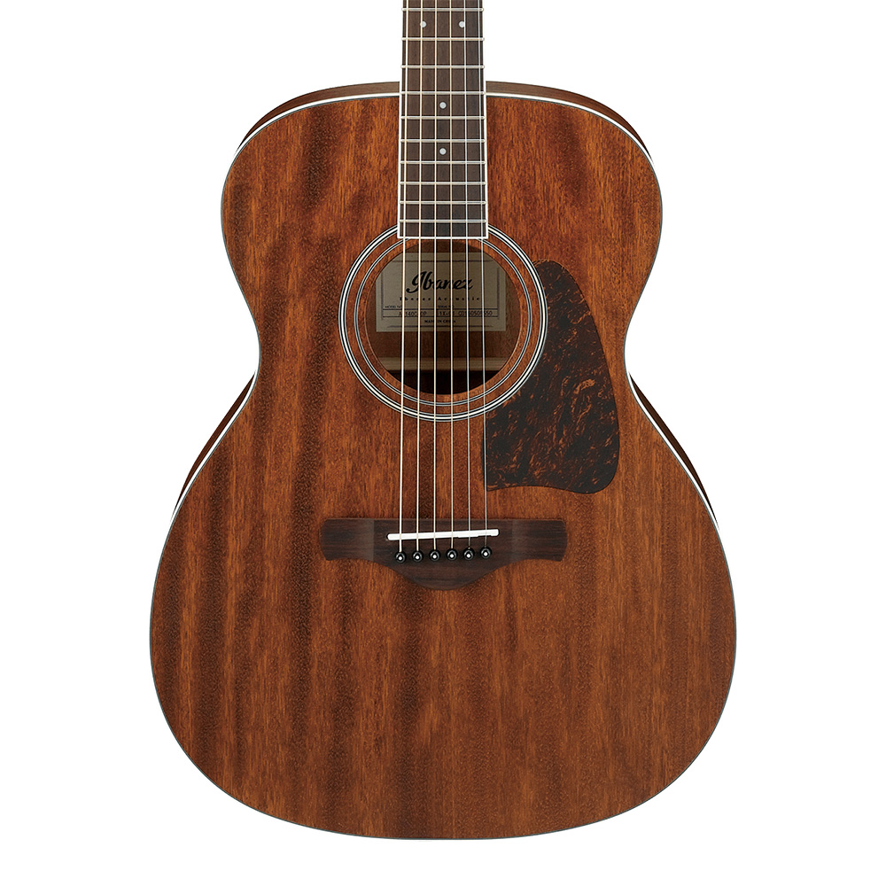 Ibanez <br>ARTWOOD Traditional Acoustic AC340 OPN Open Pore Natural