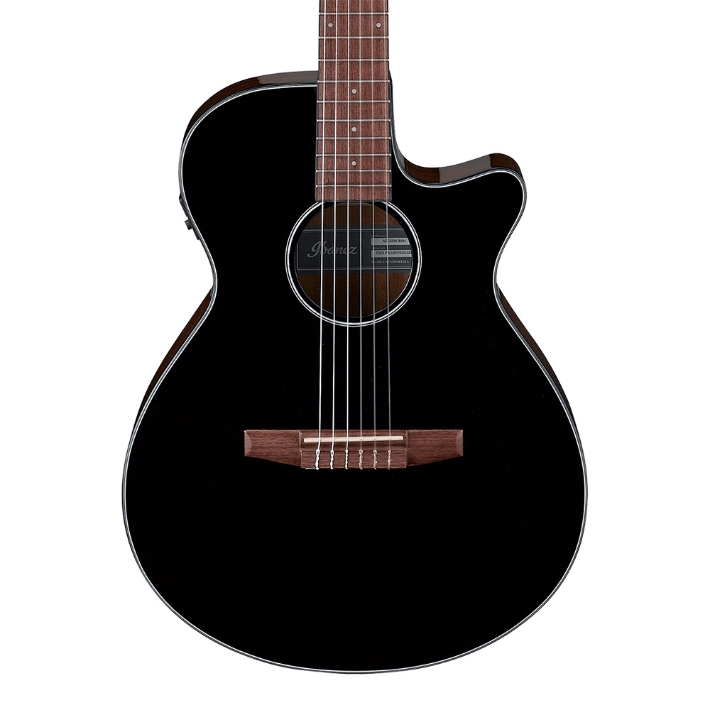 Ibanez <br>AEG50N-BKH (Black High Gloss)