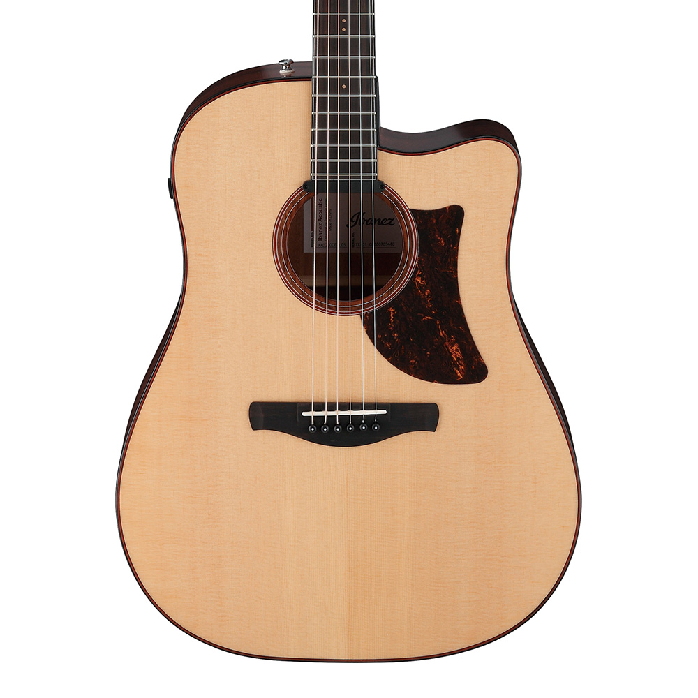 Ibanez <br>Advanced Acoustic AAD300CE-LGS (Natural Low Gloss)